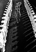 Inspection of personnel aboard a U.S. submarine at New London submarine base, Conn.  August 1943.  Attributed to Comdr. Edward J. Steichen.  (Navy)<br /> Exact Date Shot Unknown<br /> NARA FILE #:  080-G-468153<br /> WAR &amp; CONFLICT BOOK #:  947