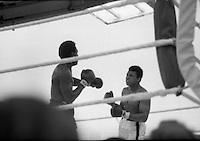 Ali vs Lewis Boxing at Croke Park.19/07/1972<br /> Image of Mohammed Ali,<br /> Images of Mohammed Ali,<br /> Picture of Mohammed Ali,<br /> Pictures of  Mohammed Ali,<br /> Pix of Mohammed Ali,<br /> Pixs of Mohammed Ali,<br /> Shot of Mohammed Ali,<br /> Shots of Mohammed Ali,<br /> photo of  Mohammed Ali,