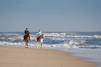 Horseback Riding, Island Beach, New Jersey