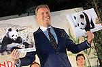 Foto: VidiPhoto<br /> <br /> RHENEN -  De twee panda's die volgend jaar naar het Ouwehands Dierenpark in Rhenen komen heten Wu Wen (het vrouwtje) en Xing Ya (het mannetje). Dat heeft eigenaar Marcel Boekhoorn (foto) van de dierentuin dinsdag onthuld. Tijdens het staatsbezoek van koning Willem-Alexander en koningin Maxima aan China, maakten de Chinezen bekend twee panda's aan Nederland uit te lenen. De hoop is dat het paar in de dierentuin in Rhenen voor nakomelingen van de bedreigde diersoort gaat zorgen. De naam Wu Wen betekent in het Nederlands 'mooie krachtige wolk', Xing Ya staat voor 'elegante ster'. Er zijn volgens het dierenpark nog veel voorbereidingen nodig voordat de panda's naar Nederland kunnen komen. De bouw van het verblijf start binnenkort en moet volgend jaar herfst klaar zijn. Ook moeten pandaverzorgers worden opgeleid. Chinese experts zullen het proces begeleiden en volgen. Ze zullen ook regelmatig langskomen. De verwachting is ook dat de komst van de dieren veel extra publiek zal trekken. Ouwehands gaat vooralsnog uit van een maximum van 10.000 bezoekers per dag. Vanwege de hoge kosten van het onderhoud van de dieren zal de toegangsprijs ook iets omhoog gaan. Het is nog niet bekend hoeveel. De parkeergelegenheid zal ook worden uitgebreid. Ouwehands moet voor de dieren een miljoen euro per jaar betalen aan China. Dit geld komt ten goede aan de bescherming van de zwart witte beren in het wild. De twee panda's kennen elkaar nog niet. De beesten gaan 'daten' voordat ze samen gaan leven in hun nieuwe onderkomen in Rhenen, wat Pandasia gaat heten.  Ouwehands heeft een bamboebedrijf in Asten gevonden dat twee keer per week verse bamboe gaat leveren. Een panda eet ruim vijftig kilo bamboe per dag.