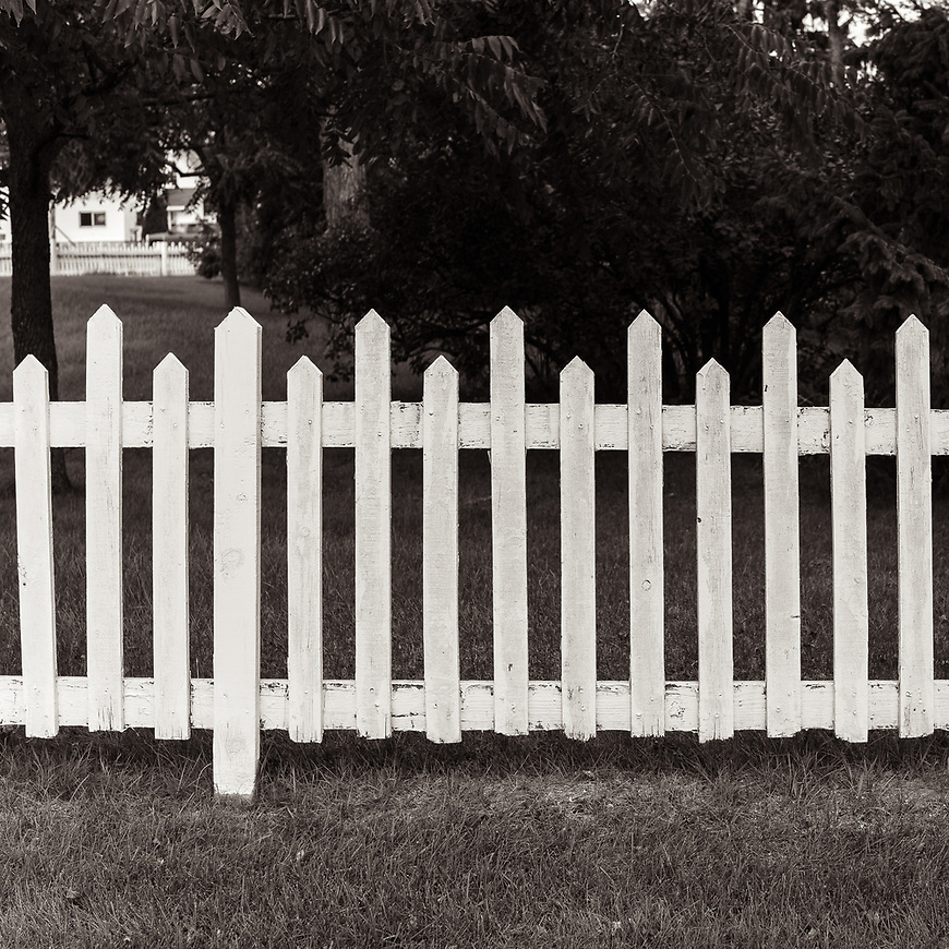 FENCE LINE #blackandwhite #monochrome #wisconsin #doorcounty #midwestmemoir