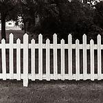 FENCE LINE #blackandwhite #monochrome #wisconsin #doorcounty #midwestmemoir