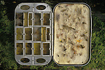 Fishermans Fly Box. Trout fishing on the river Test Hampshire England.  The English Season published by Pavilon Books 1987