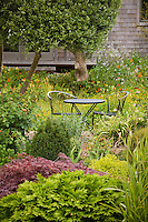 Table and chairs in cottage garden with colorful foliage. Sally Robertson Garden.
