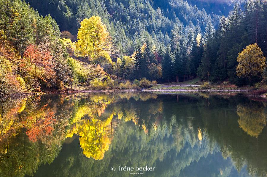 Reflection - Lake Lipovica, Zaovine.