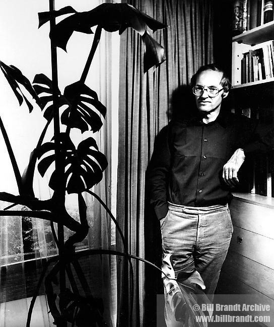 Michael Frayn, 1980