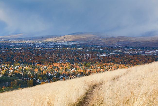 Missoula, Montana valley viewed from a trail above the city on Mount Sentinel. Fall colors of the valley trees and golden grass on the hill.