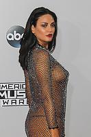 NOV 23 American Music Awards - red carpet