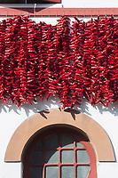 France, Aquitaine, Pyrénées-Atlantiques, Pays Basque, Espelette: pendant la fête du piment d'Espelette, cordes et guirlandes de piments sont mises a sécher sur les façades et les balcons des maisons. //  France, Pyrenees Atlantiques, Basque Country, Espelette:  during Espelette pepper festival , characteristic festoons of pepper are hung on balconies and house walls throughout the communes to dry out.