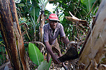 Jean Nitho works on his farm in Despagne, an isolated village in southern Haiti where the Lutheran World Federation has been working with residents to improve their quality of life.