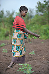 A woman plants seeds in a community agriculture project outside Kamina, in the Democratic Republic of the Congo. Sponsored by the United Methodist Committee on Relief (UMCOR), the project increases food security in poor communities, especially for women and children.