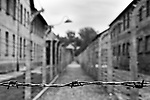 Wire fence in Auschwitz Concentration Camp, Poland.
