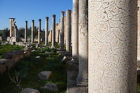 View from the side of Columns in the Temple of Juno Caelestis, 3rd century, in Dougga, Tunisia, pictured on January 31, 2008, in the morning. Dougga has been occupied since the 2nd Millenium BC, well before the Phoenicians arrived in Tunisia. It was ruled by Carthage from the 4th century BC, then by Numidians, who called it Thugga and finally taken over by the Romans in the 2nd century. Situated in the north of Tunisia, the site became a UNESCO World Heritage Site in 1997. Picture by Manuel Cohen.