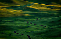 A meandering ditch winds its way through the lush green rolling hills of the Palouse in Southeastern Washington.