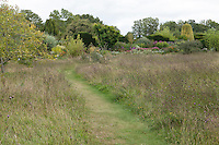 A mown grass pathway winds through a wildflower meadow, flanked by mature borders