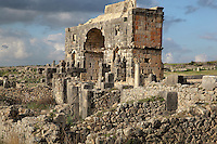 The House of the Dog (foreground) where a bronze canine statue was found, and the Triumphal Arch of Caracalla, built 217 AD by the city's governor Marcus Aurelius Sebastenus in honour of Emperor Caracalla, 188-217 AD, and his mother Julia Domna, Volubilis, Northern Morocco. Volubilis was founded in the 3rd century BC by the Phoenicians and was a Roman settlement from the 1st century AD. Volubilis was a thriving Roman olive growing town until 280 AD and was settled until the 11th century. The buildings were largely destroyed by an earthquake in the 18th century and have since been excavated and partly restored. Volubilis was listed as a UNESCO World Heritage Site in 1997. Picture by Manuel Cohen