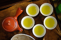 Green tea and a Japanese style teapot, Uji city, Kyoto prefecture, Japan, July 31, 2006.