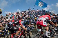 peloton up the infamous Muur van Geraardsbergen (1100m/7.6%) that is back in the parcours after a 5 year hiatus<br /> <br /> 101th Ronde Van Vlaanderen 2017 (1.UWT)<br /> 1day race: Antwerp &rsaquo; Oudenaarde - BEL (260km)