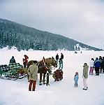 Trentino alto Adige Italian Alps in winter