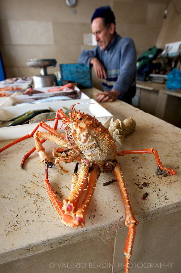 A fishmonger with a giant spider crab waiting for its shopper.