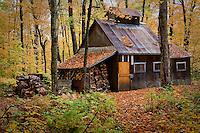 """A sugar house is seen just north of Quebec city October 6, 2009. A sugar house (also known as a sap house, sugar shack, sugar shanty, or """"cabane a sucre"""") is a small cabin or shack where sap collected from sugar maple trees is boiled into maple syrup."""