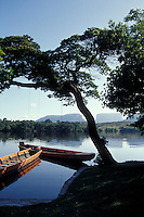 Motorized canoes or curiaras moored on the banks of the Rio Carrao, Canaima National Park,  Bolivar state, Venezuela. Tepuis Kurin, Kuravaina, and Venado are in the background.