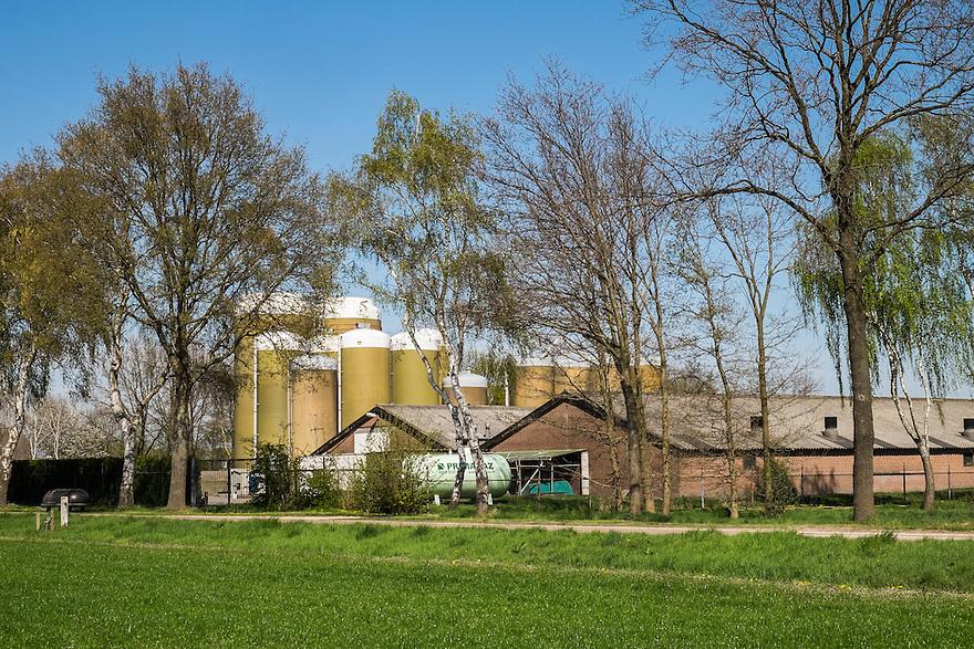 Nederland, omgev. Boekel, 20 april 2015<br /> Grote veestallen en voedersilo's in het brabantse landschap. <br /> <br /> Foto: Michiel Wijnbergh