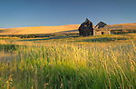 Washington, Eastern, Palouse Region, Farmington. Last light of a summer day touches a collapsing barn in the rolling hills of the Palouse.