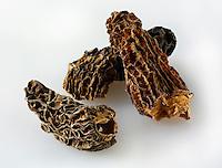 Dried Jumbo Morel mushrooms