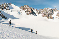 Climbers heading off across Davis Snowfield of Franz Josef Glacier, Westland National Park, West Coast, New Zealand