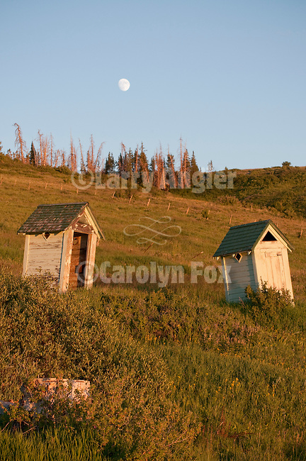 Moonrise over two old outhouses at the old Forest Severice camp high on the western slope of the Wasatch Plateau
