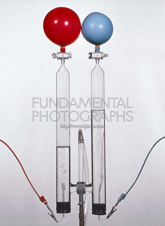 ELECTROLYSIS OF WATER: HOFFMAN APPARATUS<br /> Demonstrated With Balloons<br /> Electricity is passed through a weak electrolyte solution of H2SO4(aq). H+ ions are attracted to the Cathode (red wire) where they gain electrons to form H2(g). At the Anode (blue wire) H2O molecules decompose to replace lost H+ ions releasing O2(g).