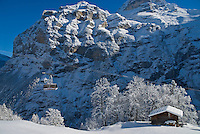 Mountain house and Swiss Alps, Gimmelwald