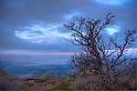 Idaho,Southeast,Boise. Sagebrush high above Boise with valley fog at daybreak.