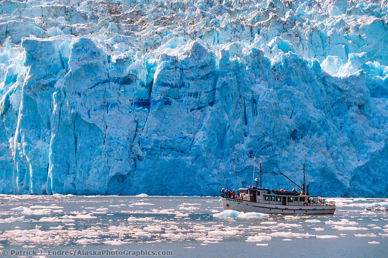 MV Discovery takes tourists by the tidewater face of Beloit glacier, Blackstone Bay, Prince William Sound, Alaska