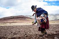 A Jalq'a woman plants potatoes in Maragua Crater, in the Cordillera de los Frailes.