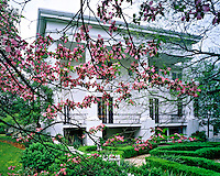 Taylor Grady House, Athens, Georgia   Antebellum home built in mid 1840's     Dogwood blooms