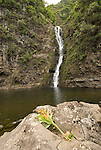 Hawaii: Molokai, Moaula Waterfall in the Halawa Valley..Photo himolo130-72416.Photo copyright Lee Foster, www.fostertravel.com, lee@fostertravel.com, 510-549-2202