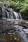 The Purakaunui Falls are a cascading three-tiered waterfall on the Purakaunui River in The Catlins region of the South Island of New Zealand.