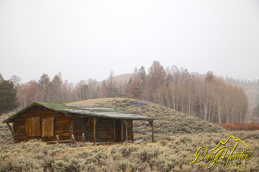 Old Homestead, Absaroka Mountains, Dubois Wyoming