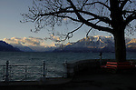 Early morning light on empty chair below tree showing spring growth on the Promenade of the lake Léman. Vevay close to Montreux,Lausanne Switzerland.