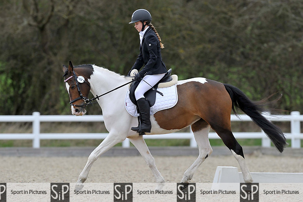 Class 4. Prelim 2. Unaffiliated dressage. Brook Farm Training Centre. Essex. 19/03/2017. MANDATORY Credit Garry Bowden/Sportinpictures - NO UNAUTHORISED USE - 07837 394578