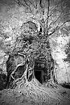 Prasat Pram or 5 Temples at Koh Ker, Cambodia - Pseudo-Infrared Image