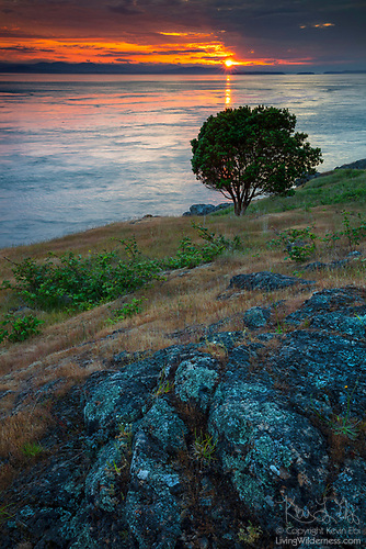 Sunset Across Haro Strait, Westside Preserve, San Juan Island, Washington