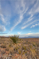 I love the clouds in Big Bend National Park. I could not pass up this image primarily because of the skies. I just had to find a nice subject in the foreground I think this yucca captures the essence of Big Bend - tough, rugged, and free in the wide open spaces of this sanctuary in South Texas.