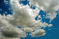 Puffy, Clouds, Blue Sky, Looking up