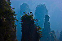 Huangshan pines and peaks<br /> Rock pinnacles in Zhangjiajie National Forest Park,<br /> People's Republic of China<br /> Wulingyuan National Park UNESCO WHS<br /> Rock formations of  quartz-sandstone