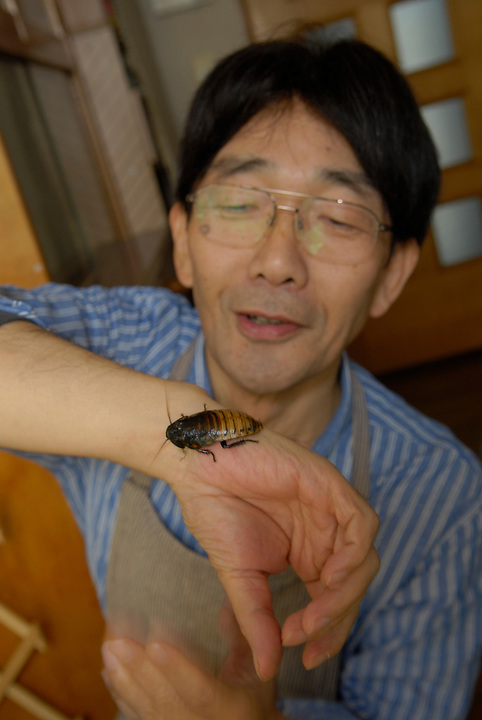 """Shoichi Uchiyama showing off one of the Madagascar cockroaches he keeps at home.Tokyo resident Shoichi Uchiyama is the author of """"Fun Insect Cooking"""". His blog on the topic gets 400 hits a day. He believes insects could one day be the solution to food shortages, and that rearing bugs at home could dispel food safety worries."""