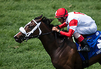 May 4, 2012. Stephanie's Kitten and John Velazquez win the Edgewood Stakes at Churchill Downs in Louisville, KY