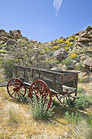 Old Buck board wagon